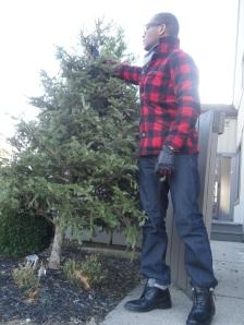 Lumberjacking the Christmas tree post Christmas